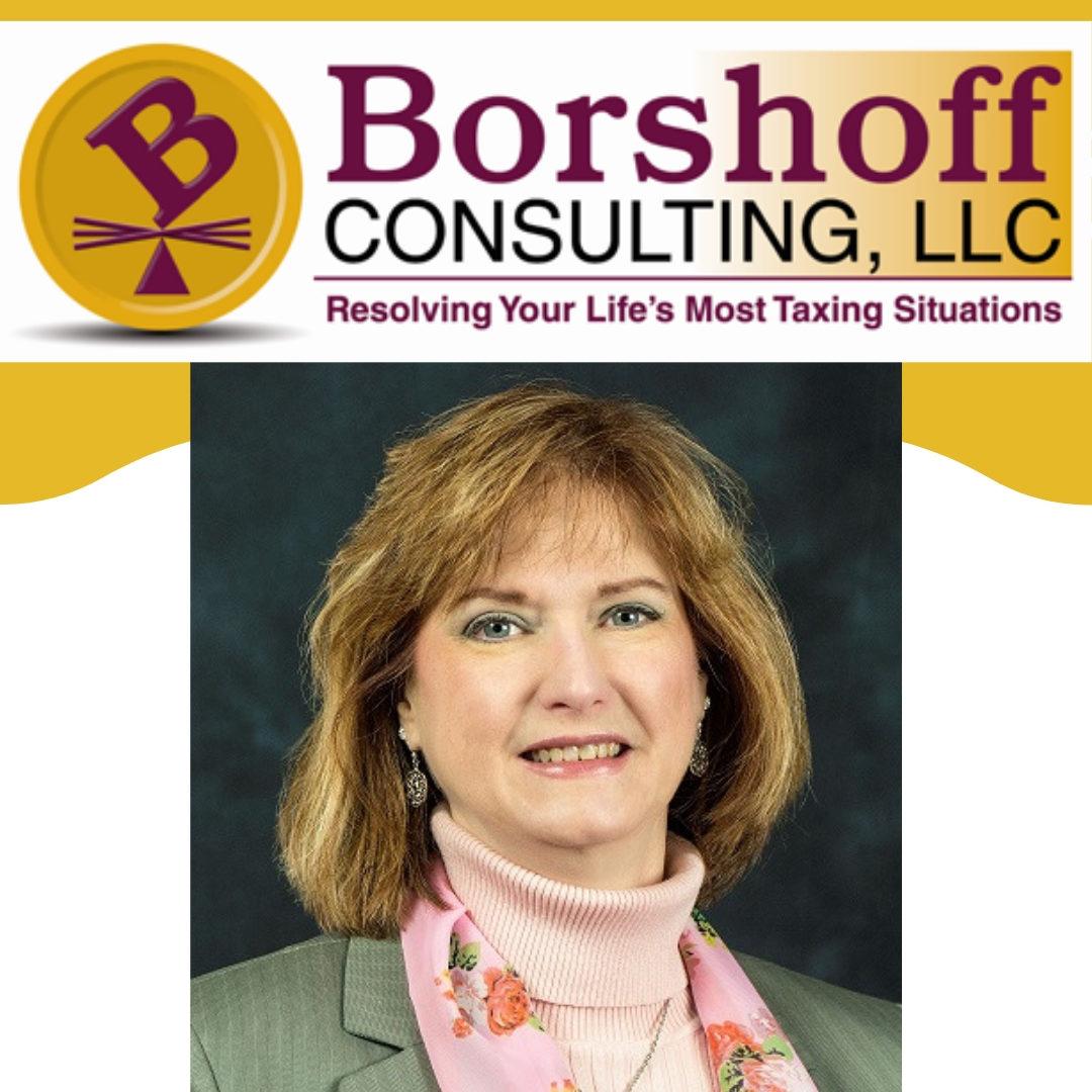 Borshoff Consulting